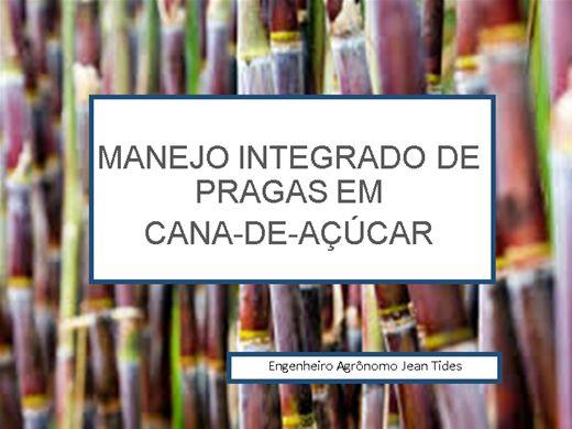 Curso Online de MANEJO INTEGRADO DE PRAGAS (MIP) EM CANA-DE-AÇÚCAR