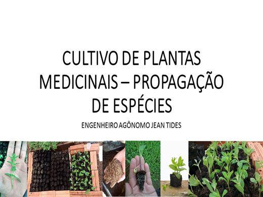 Curso Online de PROPAGAÇÃO DE ESPÉCIES MEDICINAIS