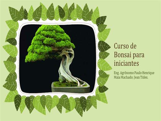 Curso Online de BONSAI PARA INICIANTES