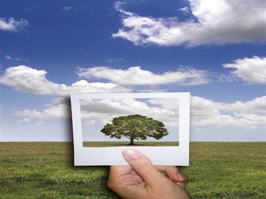 Curso Online de Preservação do Meio Ambiente