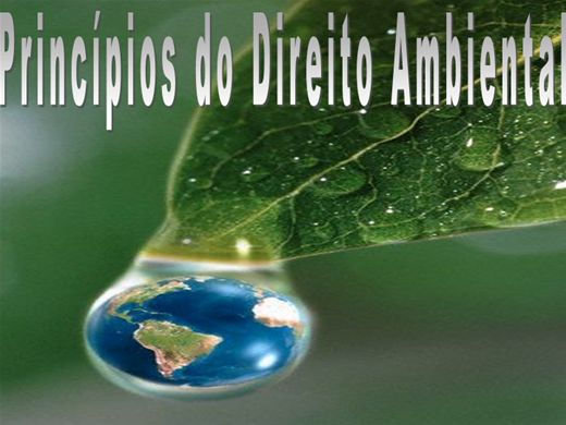 Curso Online de Principio do Direito Ambiental