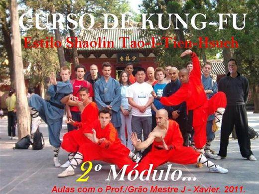 Curso Online de KUNG-FU ESTILO SHAOLIN TAO-I-TIEN-HSUEH. 2º MÓDULO 2011.