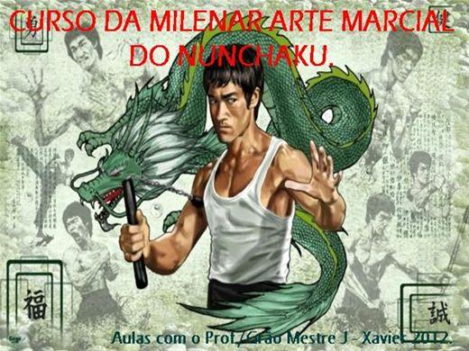 Curso Online de MILENAR ARTE MARCIAL DO NUNCHAKU. 2012.