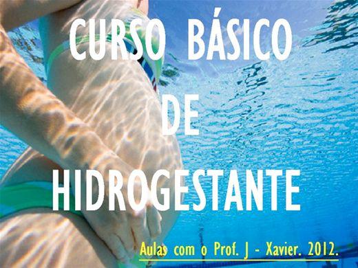 Curso Online de BÁSICO DE HIDROGESTANTE. 2012.