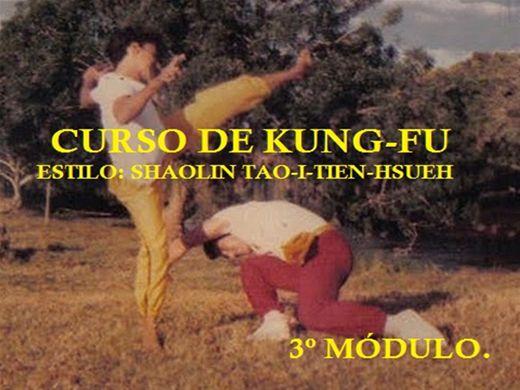 Curso Online de KUNG-FU ESTILO SHAOLIN TAO-I-TIEN-HSUEH. 3º MÓDULO. 2017.