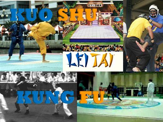 Curso Online de Regras de Kuoshu - Leitai