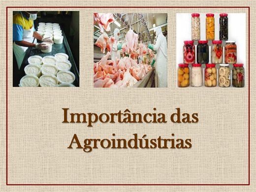 Curso Online de Importância das Agroindústrias