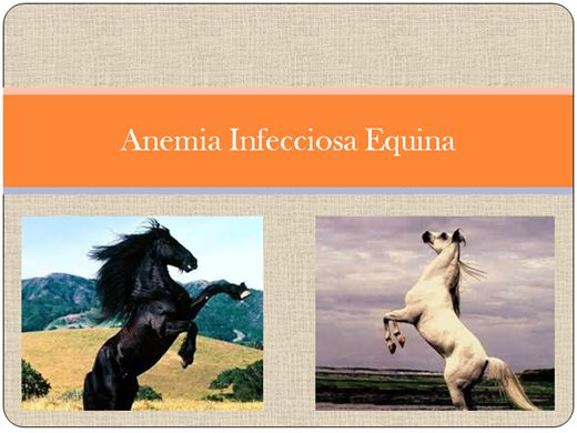 Curso Online de Anemia Infecciosa Equina