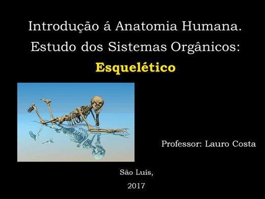 Curso Online de Anatomia - esqueleto humano