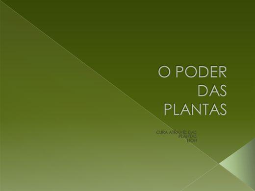 Curso Online de CURA ATRAVÉS DAS PLANTAS