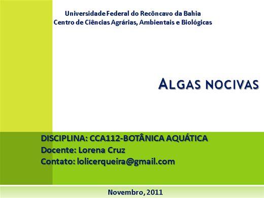 Curso Online de Algas Nocivas