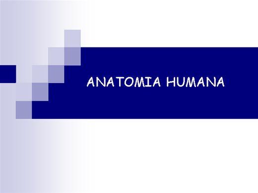 Curso Online de CURSO DE ANATOMIA HUMANA