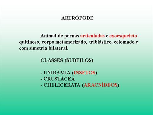Curso Online de Artrópodos