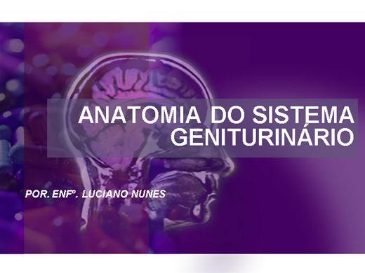 Curso Online de ANATOMIA E FISIOLOGIA DO SISTEMA EXCRETOR