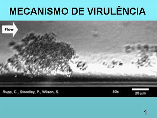 Curso Online de VIRULENCIA