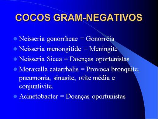 Curso Online de COCOS GRAM-NEGATIVOS