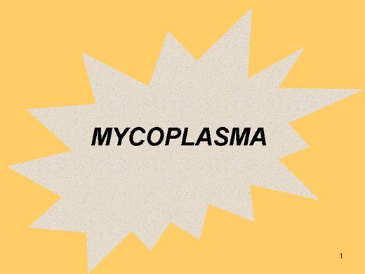 Curso Online de MICOPLASMAS