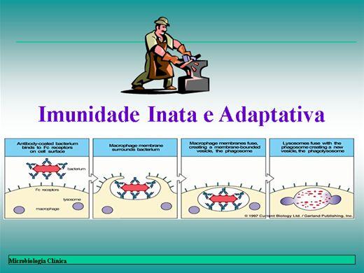 Curso Online de IMUNIDADE E EVASÃO