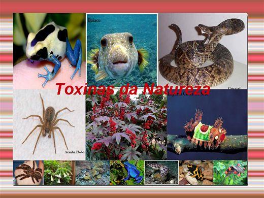 Curso Online de Toxinas da Natureza
