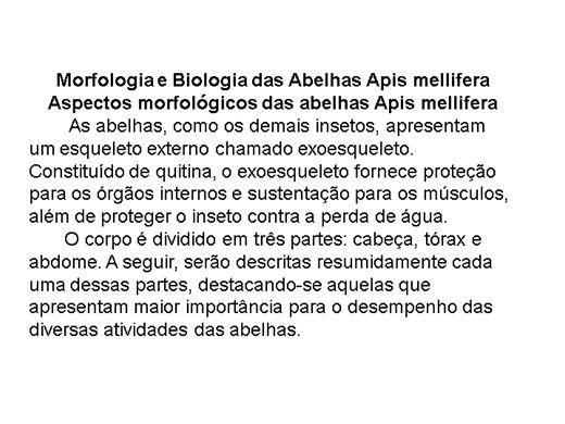 Curso Online de O CONHECIMENTO SOBRE A VIDA DAS ABELHAS.