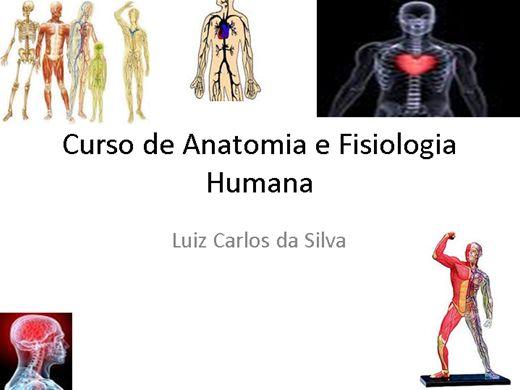 Curso Online de Curso de Anatomia e Fisiologia Humana