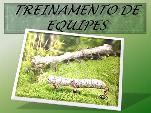 Curso Online de TREINAMENTO DE EQUIPES