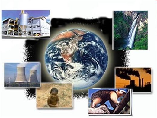 Curso Online de Crimes Ambientais