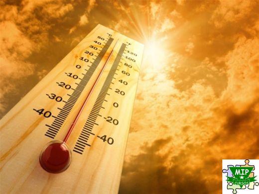 Curso Online de Trabalhos em Temperaturas Extremas