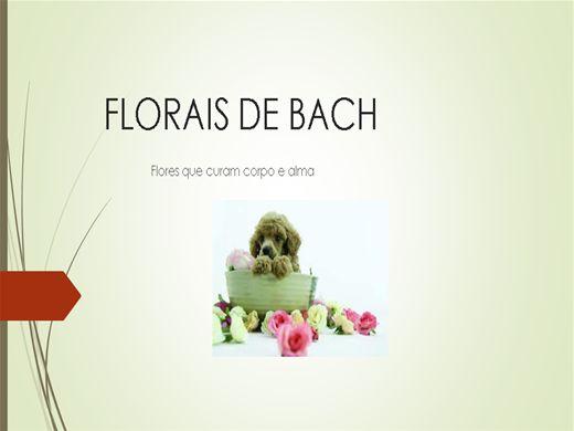 Curso Online de Florais de Bach  -  O essencial sobre florais