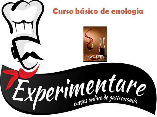 Curso Online de Básico de Enologia