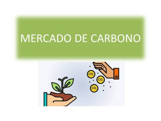 Curso Online de GESTÃO AMBIENTAL: MERCADO DE CARBONO.