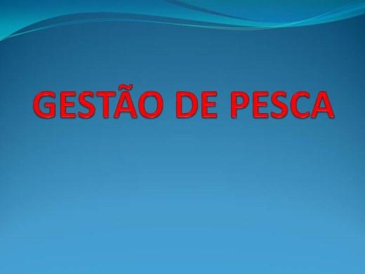 Curso Online de GESTÃO DE PESCA