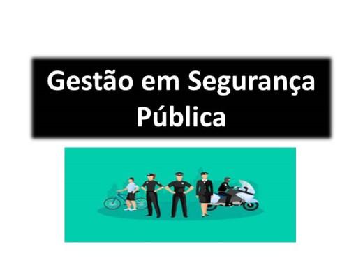 Curso Online de Gestão em Segurança Pública