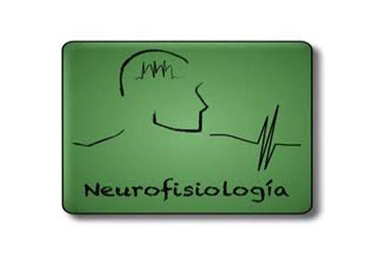 Curso Online de Neurofisiologia e psicologia do desenvolvimento