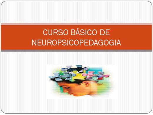 Curso Online de Curso Básico de Neuropsicopedagogia