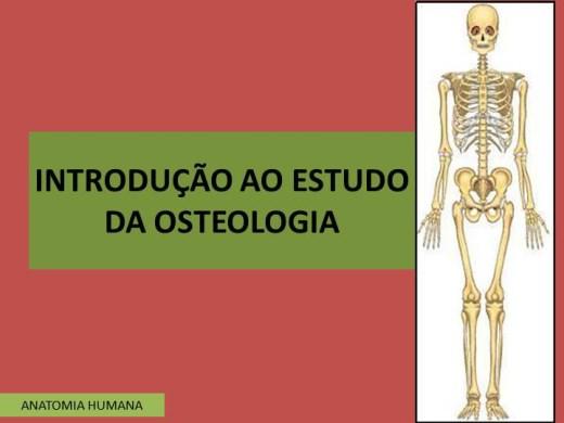 Curso Online de INTRODUÇÃO AO ESTUDO DA OSTEOLOGIA