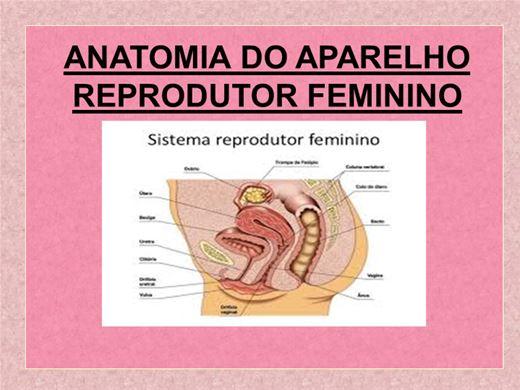 Curso Online de CURSO SOBRE ANATOMIA DO APARELHO REPRODUTOR FEMININO