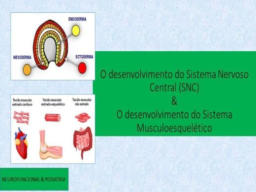 Curso Online de Desenvolvimento do Sistema Nervoso Central (SNC)