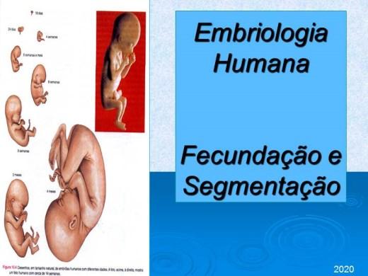Curso Online de EMBRIOLOGIA HUMANA