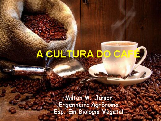 Curso Online de Cultura do Café