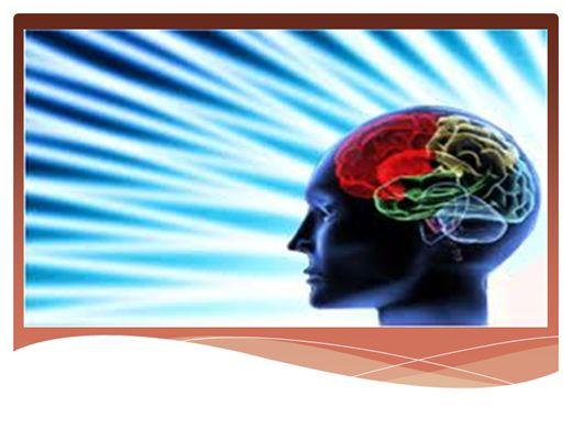 Curso Online de NEUROCIENCIA