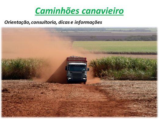 Curso Online de Caminhões canavieiro