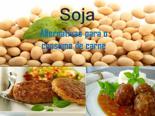 Curso Online de Soja-Alternativa para consumo de carne