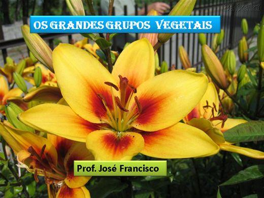 Curso Online de OS GRANDES GRUPOS VEGETAIS