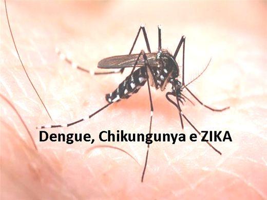 Curso Online de Dengue, Chikungunya e ZIKA