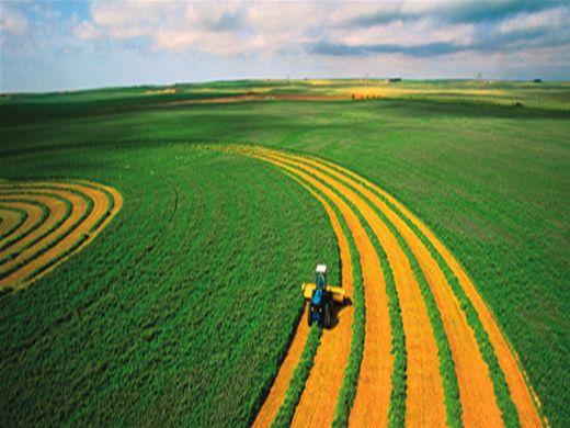 Curso Online de Agricultura