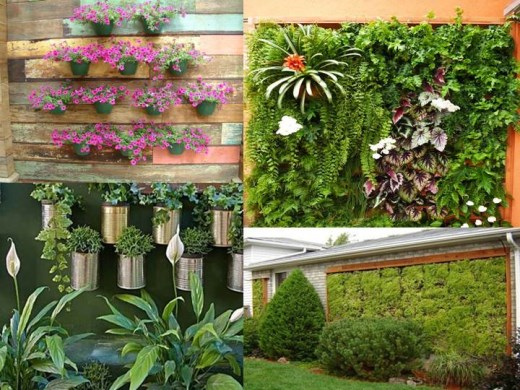 Curso Online de Jardins Verticais