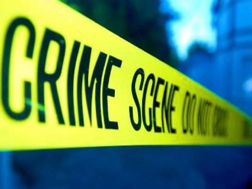 Curso Online de Introdução ao Estudo da Criminologia