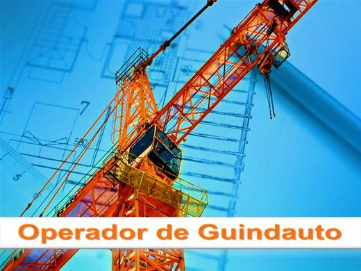 Curso Online de Operador de Guindauto