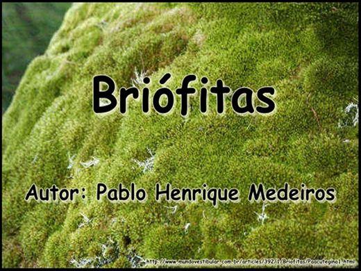 Curso Online de Briófitas